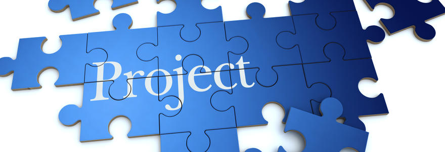Comprehensive project management services